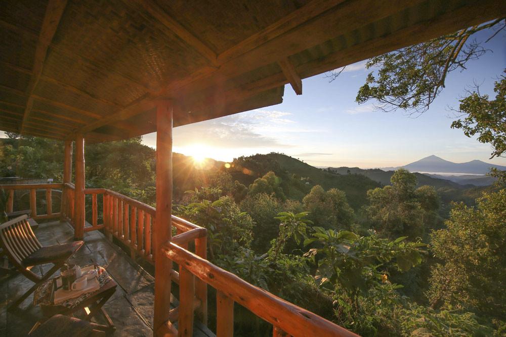 view from bwindi chimp and gorilla photo safari